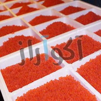 aquaculture3
