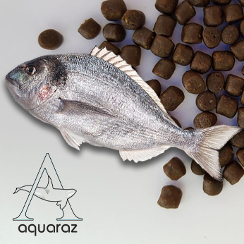 Aquaraz-List-Feed-Seabream-Pic